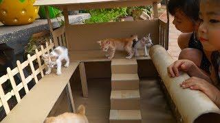 How To Make Easy Cat House From Cardboard