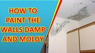 paint industrial, How To Paint the walls damp and moldy, walls damp