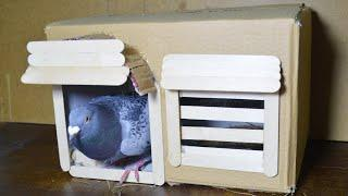 how to make simple pigeon house from cardboard