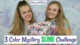 3 Color Mystery Slime Challenge ~ Jacy and Kacy