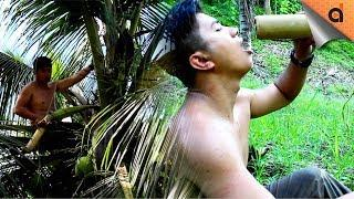 How to Make Coconut Wine