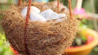 Balcony गार्डन के लिये बनाये ????प्राक्रतिक  (Bird Nest) ...How to make Bird Nest