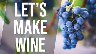 Lets Make Wine The Pruifying