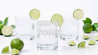 How to Make a Gin and Tonic Cocktail