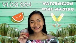 Vlog 004 | Watermelon Wine Making Part 1 and Part 2 | Phobe Jane
