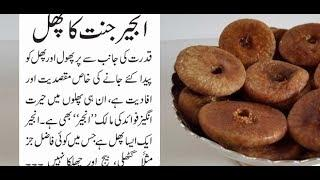 anjeer benefits in hindi, figs health benefits, figs health benefits weight loss, News Tv