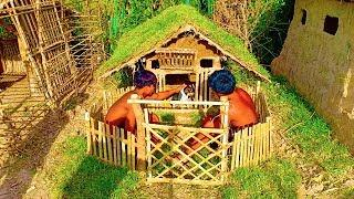 Builder Best Videos: Building Wild Dog House
