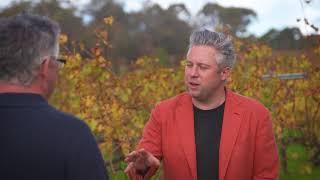 Delish - Happs How to make great Wine