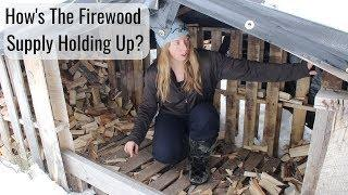 Life in a Tiny House called Fy Nyth - How's the Firewood Supply Holding Up?