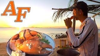 Delicious Mud Crab in White wine & Garlic Sauce Recipe Catch and Cook kepiting lumpur EP.410