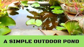 How to make a Simple and Stunning House Pond | Apartment Pond...