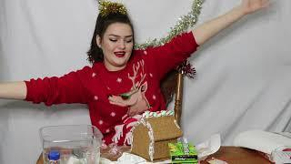 Let's (try to) Make a Gingerbread House!