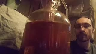 How to make Apple Wine cheap and easy(Step 3)
