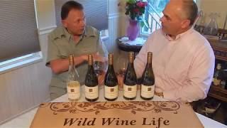Wild Wine Life, Wine Tap Tips, Wayne Bailey & Pinot Noir II