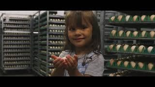 Bradner Farms Brand Movie