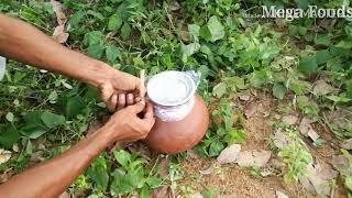 Primitive method of wine preparation | coconut wine preparation Method | coconut wine