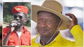 Bobi Wine and Museveni : Birds of a feather that fly apart - By Andrew Mwenda