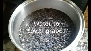 Making Wild Grape Wine-Off Grid Living