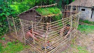 Builder Best Video: Building  House Chicken