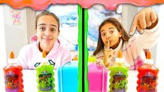 TWIN TELEPATHY SLIME CHALLENGE! Glitter Slime with Sisters Sophia and Sarah