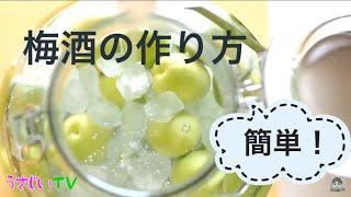 簡単!梅酒の作り方 How to make plum wine (Umeshu) 福岡のYouTuber 宇佐美ダイ