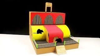 How to Make Cardboard House for Rat - Cardboard hamster house