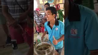 Cobra snake wine. How to make original snake drink? Vietnam receipt for cobra snake drink.