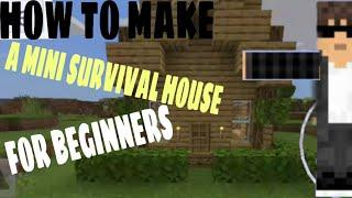HOW TO MAKE A MINI HOUSE FOR BEGINNER