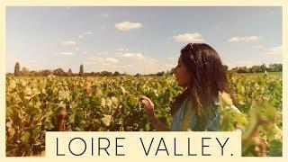 LEARNING HOW TO TASTE WINE IN FRANCE! & Why You Should Spit It Out