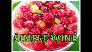 SIMPLE WINE/HOW TO MAKE WINE USING CHERRY PLUM