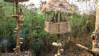 Unbelievable!! Build Beautiful Rounded Spiral Stairs for Tree House