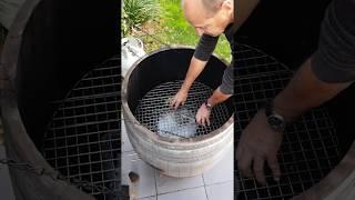 How To Smoke Quail (the best you've ever tasted!!). How To Use A Wine Barrel Smoker.