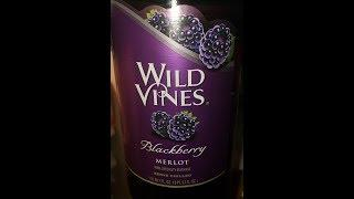 Blueberry Wine Tasting