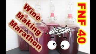 Wine making Marathon. 100,000 views toast !