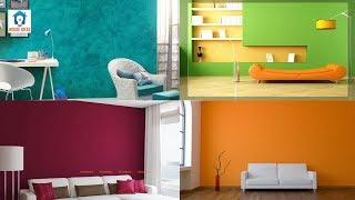 Awesome wall colour combination ideas | Wall color design ideas | wall painting designs ideas