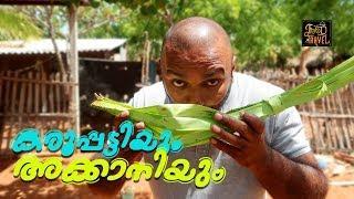 Palm Wine & Jaggery Making Video    കരുപ്പട്ടിയും അക്കാനിയും   Food N Travel Malayalam