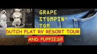 RV LIFE - T.U.T/Dutch Flat RV Resort Tour/The Creek/PUPPIES/Tom Stomps Grapes & Drinks It!