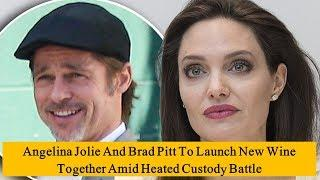 Angelina Jolie And Brad Pitt To Launch New Wine Together Amid Heated Custody Battle