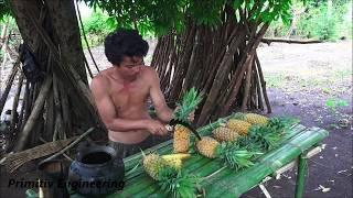 Primitiv Technology Engineering - Making Wine from Pineapple (Delicious)