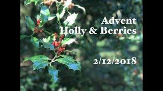 Ophelia Talks about Holly and Berries
