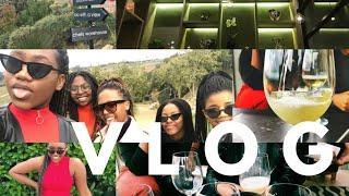 VLOG | WINE TASTING IN CONSTANTIA CPT & BRUNCH | Everything Vee