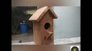 Birdhouse Idea _ How To Make A Bird House At Home - Birds Nesting Box YouTube