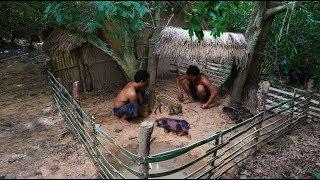 Help Wild Pig In Hole And Make House For It