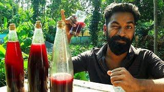 My Home Made Wine Making | ഞാൻ ഉണ്ടാക്കിയ വൈൻ  | M4 Tech |