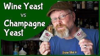 Wine Yeast vs Champagne Yeast!  Which is better?