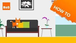 How to choose a pet friendly house plant