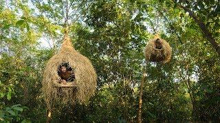 Building Bird Nest Tree House