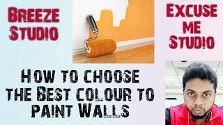 How to choose the Best Colour to paint your walls | Choose and apply yourself | Exterior & Interior