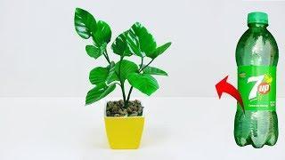 Artificial leaf plant for home decoration // Plastic bottle tree