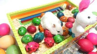 How To Make Easter Eggs ???? House For Hamsters ????